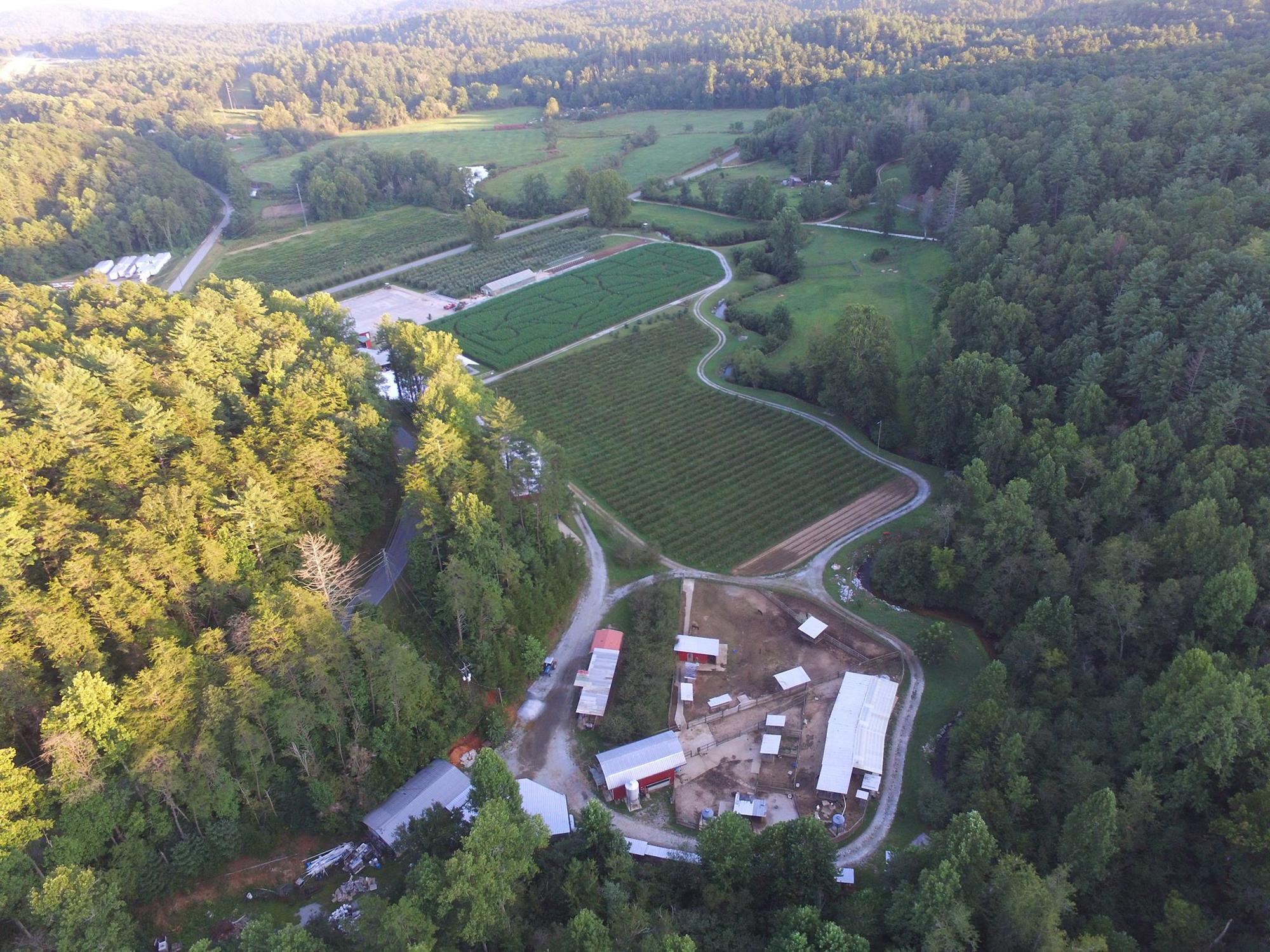 Home - Hillside Orchard Farms